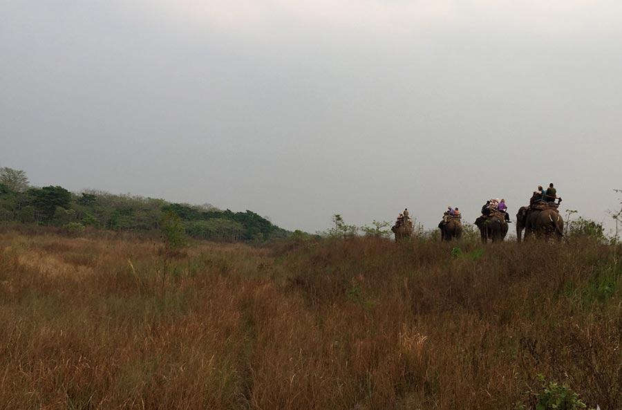 Lumbini and Chitwan Safari Tour
